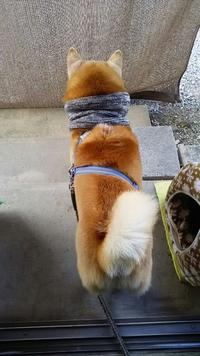 小雪混じりの寒さ!!