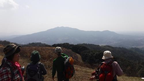 臥龍梅の三池山