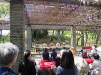 舞鶴公園の藤と牡丹