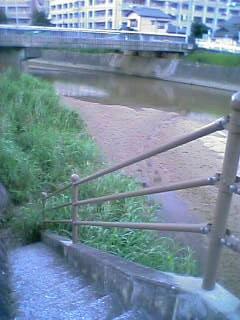 樋井川の階段