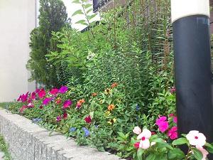 ひがし薬局花壇