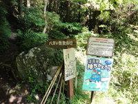 八方ガ岳(熊本県)沢登り