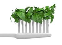 歯ブラシの洗い方(予告編)