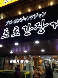 ほりねこ院長の韓国レポートVol.11