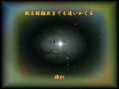 フォト575『 散る桜極北までも追いかくる 』tw1203