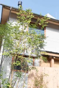 藤本香織さんのデンホームの新モデルルーム
