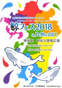 【福岡でのイベント・鯨フェス2018】