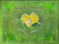 『 恋よ恋命シンクロ草の花 』妄恋575交心vq2609