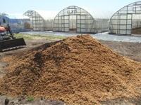 今年の焼酎粕堆肥作り