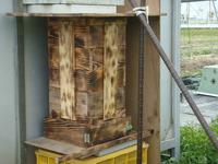 ミツバチの新居のリフォーム