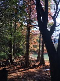 九州の一度は行ってみたい絶景