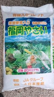 庭の手入れ☆昨日の夕食