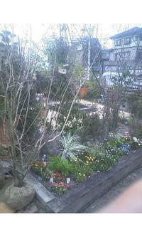 コテージガーデン植木祭り。