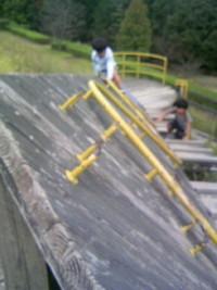 近所の大きな公園 2