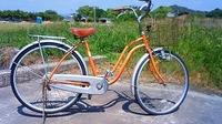 自転車を無料回収に出しました。