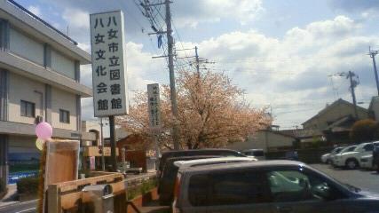 八女図書館の桜