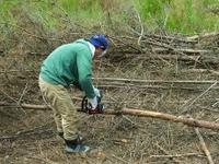 泉山青空。松の木で薪づくり。その弐
