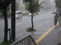 もういいよ!雨!!