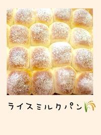 ライスミルクパン新発売