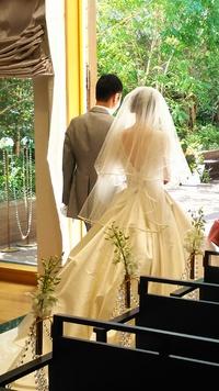 ⭐️ 美しい花嫁さん  お幸せに ⭐️