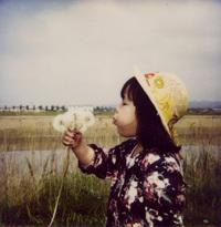 「1/4の奇跡」の巻 ホロリ編