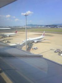 福岡空港に行ってきました♪小麦編