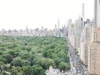 今回のニューヨークでも素晴らしい成果を上げました。