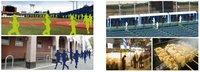 12/17・18「福岡しっとうとマラソン」明治神宮野球場にて開催