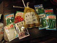 夏収穫の豆類の準備