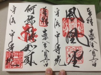 夏の京都*一泊二日弾丸の旅@平等院と抹茶パフェと花火と。