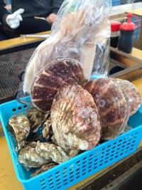 今年も糸島に牡蠣喰いに行ってきた!
