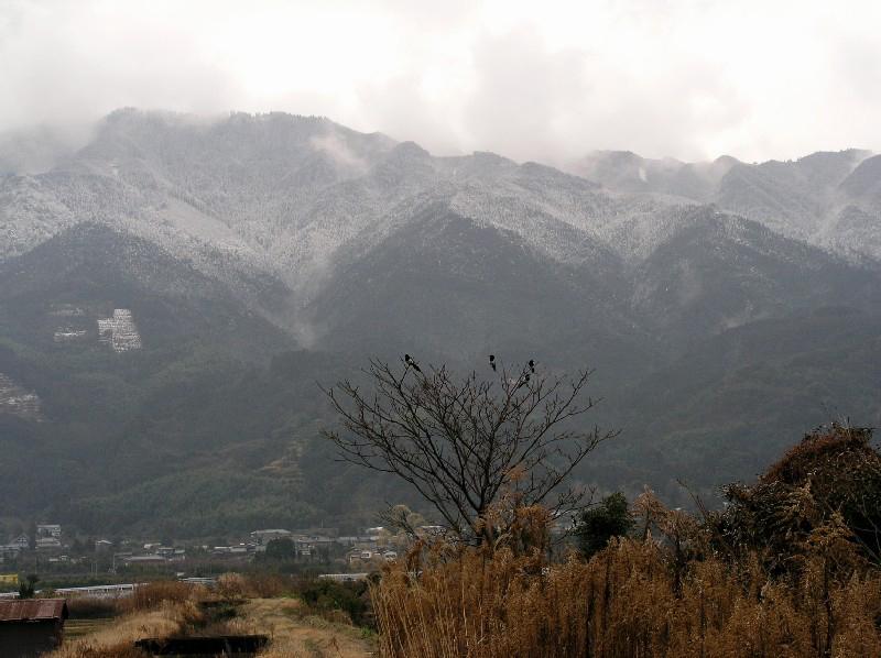 カチガラスと雪の耳納山