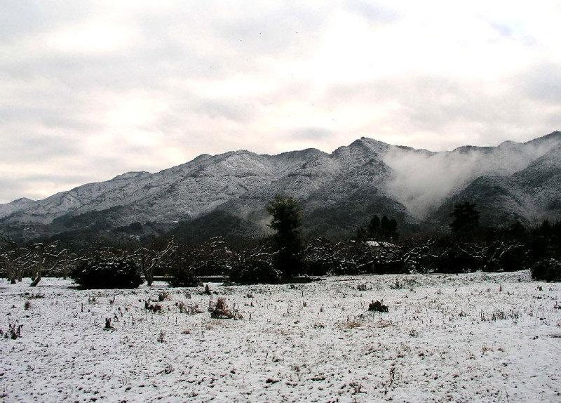 雪の耳納連山