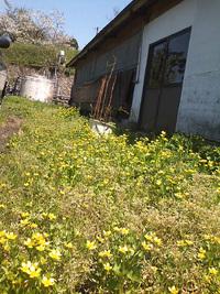 春の陽気・・・