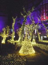 福岡 天神 / 博多のイルミを見に行ってきました。