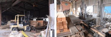 ケヤキ建築古材を製材に行って来ました。
