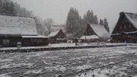 感動、初雪でした!