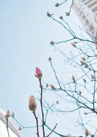 長崎で気のトレーニング~3月28日