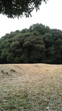 岩戸山古墳(八女市)
