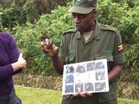 ウガンダでゴリラに会おう!その⑦