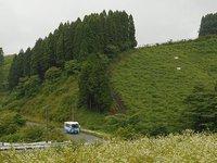 新カテゴリ:高森町民バス