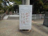 香椎宮鶏石神社香椎の杜あおぞらたまご市