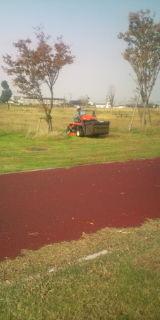 芝を刈ってます
