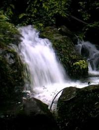 畑観音参道の滝
