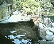 岩蔵 露天風呂