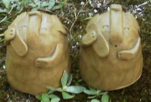 携帯電話を使いこなす象