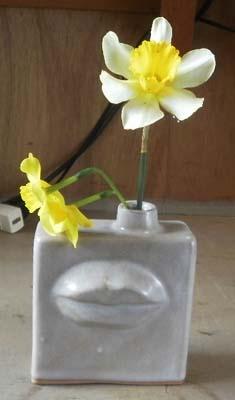 水仙と黄色水仙