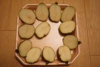 春ジャガイモの植え付け準備