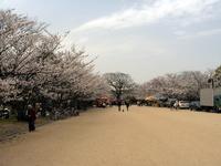大濠公園&舞鶴公園、黄砂だけど良い天気。