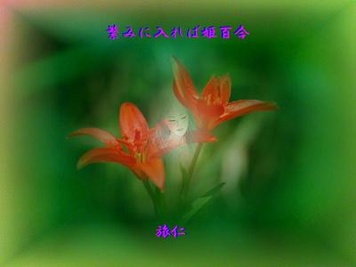 フォト一行詩『 繁みに入れば姫百 』tr0606